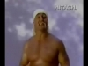 Hulk Hogan Gone Soft view on ebaumsworld.com tube online.